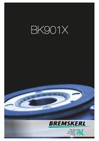 BK901X Flyer Foto